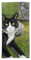 Cat In A Rock Garden Beach Towel