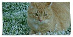 Cat In Frosty Grass Beach Towel