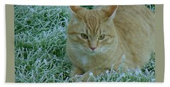 Cat In Frosty Grass Beach Sheet