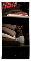 Beach Towel featuring the photograph Cat In The Closet by Laura Melis