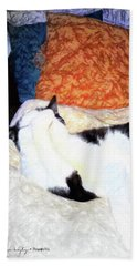 Cat Nap - Zen And The Art Of Washing Beach Towel