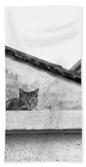 Cat On A Roof, Varenna Beach Sheet