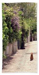 Cat On Cobblestone Beach Sheet