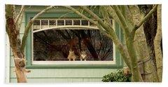 Cat Pals Waiting Beach Sheet