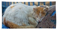 Cat Sleeping In Fishing Port Beach Towel