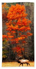 Cataloochee Color Beach Towel