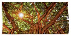 Beach Towel featuring the photograph Catch A Sunbeam Under The Banyan Tree by D Davila