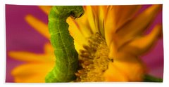 Caterpillar In Flower Beach Towel