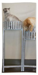 Cats In Baskets Beach Sheet