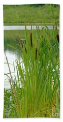Cattails And Still Water Beach Towel