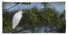 Cattle Egret In The Morning Light Beach Sheet