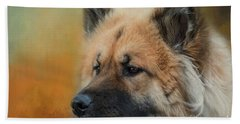 Caucasian Shepherd Dog Beach Towel by Eva Lechner