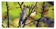 Beach Towel featuring the photograph Cedar Waxwing With Windblown Crest by Kerri Farley of New River Nature