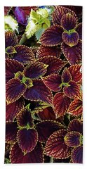 Celosias 9 Beach Towel