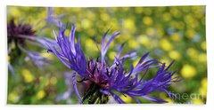 Centaurea Montana Flower Beach Sheet