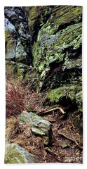 Central Park Rock Formation Beach Towel by Sandy Moulder