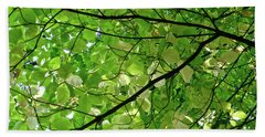 Changing Colors Yosemite Valley Beach Towel by Amelia Racca