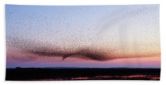 Chaos In Motion - Bird Of Many Birds Beach Towel