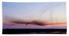 Chaos In Motion - Bird Of Many Birds Beach Sheet by Roeselien Raimond