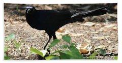 Charleston Wildlife. Black Bird Beach Towel