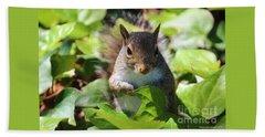 Charleston Wildlife. Squirrel Beach Towel