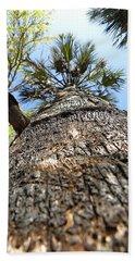 Charred Palm Tree 000 Beach Sheet by Chris Mercer