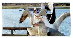 Chatty Seagull Birds Beach Towel