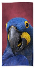 Cheeky Macaw Beach Towel