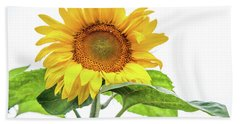 Beach Towel featuring the photograph Cheerful Flower Cheerful Mood by Jenny Rainbow