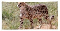 Cheetah No. 3 Beach Towel