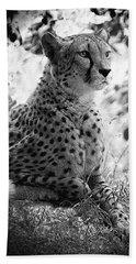 Cheetah B W, Guepard Black And White Beach Towel