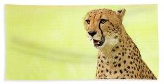 Cheetah Close-up Website Banner Beach Sheet
