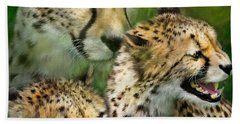 Cheetah Moods Beach Towel by Carol Cavalaris