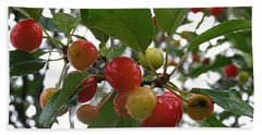 Beach Towel featuring the photograph Cherries In The Morning Rain by Angie Rea