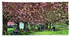 Cherry Blossom Trees Of B B G # 4 Beach Sheet