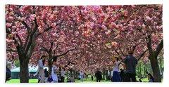Cherry Blossom Trees Of B B G # 8 Beach Sheet