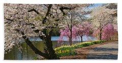 Cherry Blossom Trees Of Branch Brook Park 17 Beach Sheet