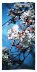 Cherry Blossoms In The Light Beach Towel by Rachel Mirror