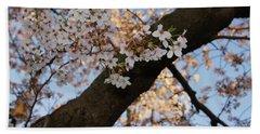 Cherry Blossoms Beach Sheet by Megan Cohen