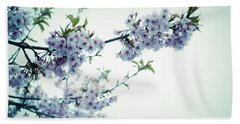 Cherry Blossoms Beach Towel by Rachel Mirror