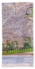 Cherry Morning Path Beach Towel