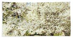 Cherry Trees In Blossom Beach Towel by Irina Afonskaya