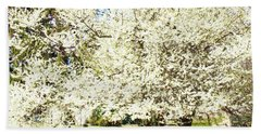 Cherry Trees In Blossom Beach Sheet