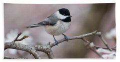 Beach Sheet featuring the photograph Chickadee - D010026 by Daniel Dempster