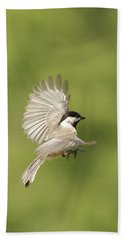 Chickadee In Flight Beach Sheet by Alan Lenk