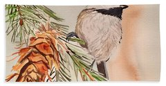 Chickadee In The Pine Beach Towel