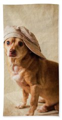Chihuahua In A Newsboy Hat Beach Towel