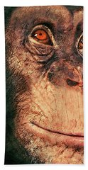 Chimp Beach Towel by Jack Zulli