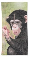 Chimpanzee Beach Sheet by Brenda Bonfield