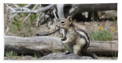 Chipmunk At Yellowstone Beach Sheet by Ausra Huntington nee Paulauskaite